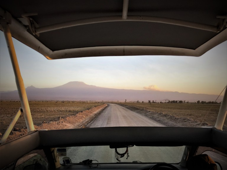 Best view of Mt. Longonot peak